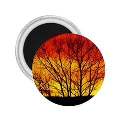 Sunset Abendstimmung 2 25  Magnets