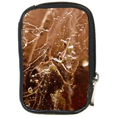 Ice Iced Structure Frozen Frost Compact Camera Cases