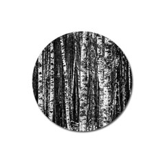 Birch Forest Trees Wood Natural Magnet 3  (round)