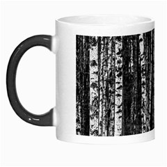 Birch Forest Trees Wood Natural Morph Mugs