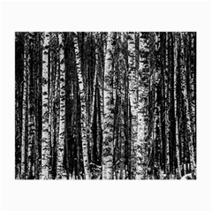 Birch Forest Trees Wood Natural Small Glasses Cloth