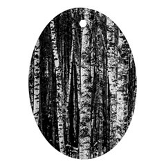 Birch Forest Trees Wood Natural Oval Ornament (two Sides)
