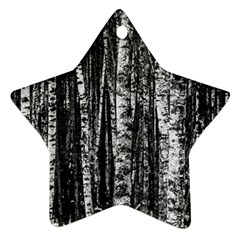 Birch Forest Trees Wood Natural Star Ornament (Two Sides)