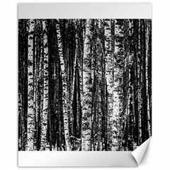 Birch Forest Trees Wood Natural Canvas 16  X 20