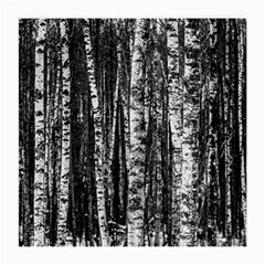 Birch Forest Trees Wood Natural Medium Glasses Cloth