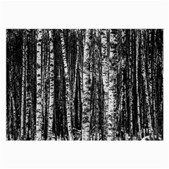 Birch Forest Trees Wood Natural Large Glasses Cloth