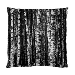 Birch Forest Trees Wood Natural Standard Cushion Case (two Sides)