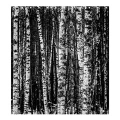 Birch Forest Trees Wood Natural Shower Curtain 66  x 72  (Large)