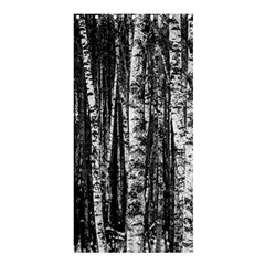 Birch Forest Trees Wood Natural Shower Curtain 36  x 72  (Stall)