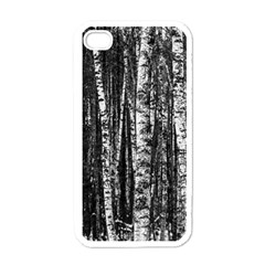 Birch Forest Trees Wood Natural Apple Iphone 4 Case (white)