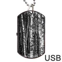 Birch Forest Trees Wood Natural Dog Tag USB Flash (One Side)