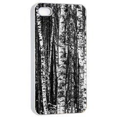 Birch Forest Trees Wood Natural Apple Iphone 4/4s Seamless Case (white)