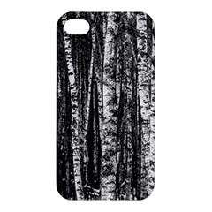 Birch Forest Trees Wood Natural Apple Iphone 4/4s Hardshell Case