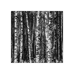 Birch Forest Trees Wood Natural Acrylic Tangram Puzzle (4  X 4 )