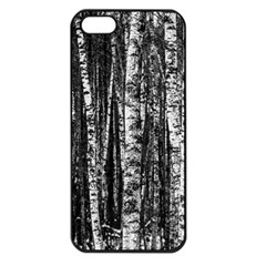 Birch Forest Trees Wood Natural Apple iPhone 5 Seamless Case (Black)