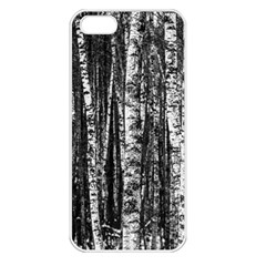 Birch Forest Trees Wood Natural Apple Iphone 5 Seamless Case (white)