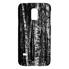 Birch Forest Trees Wood Natural Galaxy S5 Mini