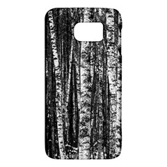 Birch Forest Trees Wood Natural Galaxy S6