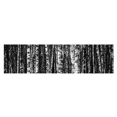 Birch Forest Trees Wood Natural Satin Scarf (Oblong)