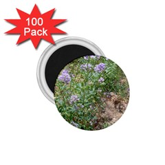 Purple Wildflowers 1.75  Magnets (100 pack)