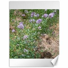 Purple Wildflowers Canvas 36  x 48