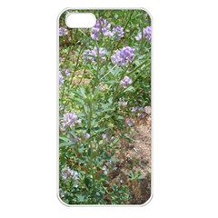 Purple Wildflowers Apple iPhone 5 Seamless Case (White)
