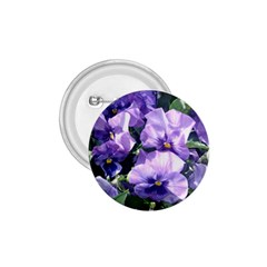 Purple Pansies 1.75  Buttons