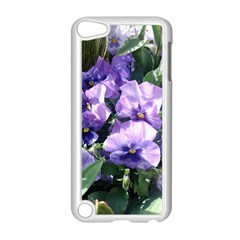 Purple Pansies Apple iPod Touch 5 Case (White)