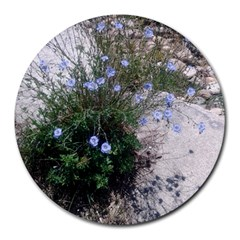 Purple Flowers On Boise River Round Mousepads