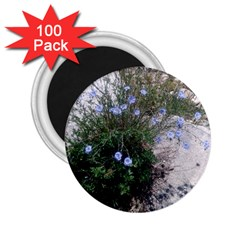 Purple Flowers On Boise River 2.25  Magnets (100 pack)