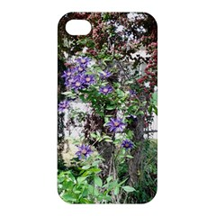 Purple Clematis Apple iPhone 4/4S Hardshell Case