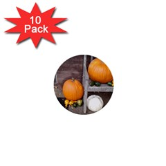 Pumpkins And Gourds 1  Mini Buttons (10 pack)