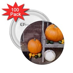 Pumpkins And Gourds 2.25  Buttons (100 pack)
