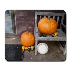 Pumpkins And Gourds Large Mousepads