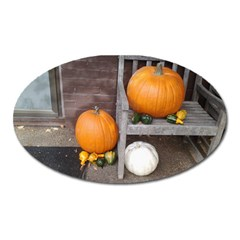 Pumpkins And Gourds Oval Magnet