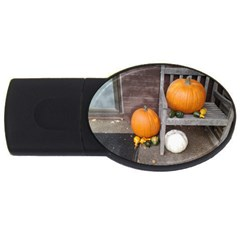 Pumpkins And Gourds USB Flash Drive Oval (2 GB)