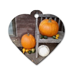 Pumpkins And Gourds Dog Tag Heart (One Side)