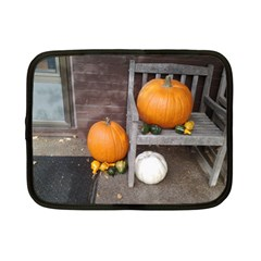 Pumpkins And Gourds Netbook Case (Small)