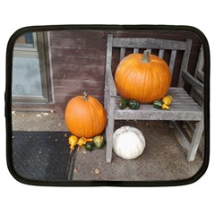 Pumpkins And Gourds Netbook Case (Large)
