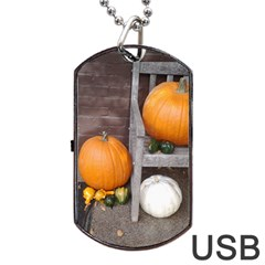 Pumpkins And Gourds Dog Tag USB Flash (One Side)