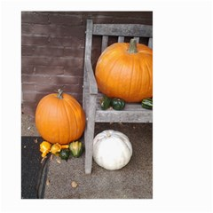 Pumpkins And Gourds Large Garden Flag (Two Sides)