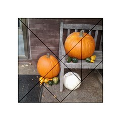 Pumpkins And Gourds Acrylic Tangram Puzzle (4  x 4 )