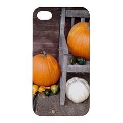Pumpkins And Gourds Apple iPhone 4/4S Premium Hardshell Case