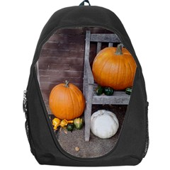 Pumpkins And Gourds Backpack Bag