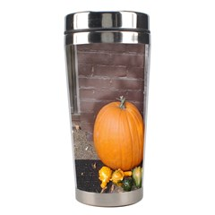 Pumpkins And Gourds Stainless Steel Travel Tumblers
