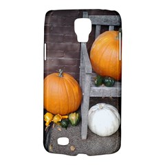 Pumpkins And Gourds Galaxy S4 Active