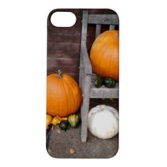 Pumpkins And Gourds Apple iPhone 5S/ SE Hardshell Case