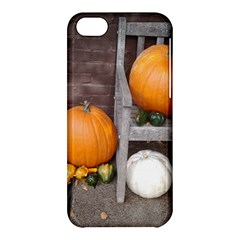Pumpkins And Gourds Apple iPhone 5C Hardshell Case