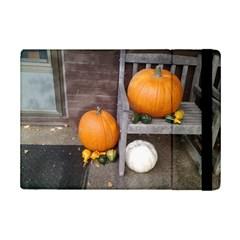 Pumpkins And Gourds Ipad Mini 2 Flip Cases