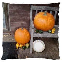 Pumpkins And Gourds Large Flano Cushion Case (Two Sides)